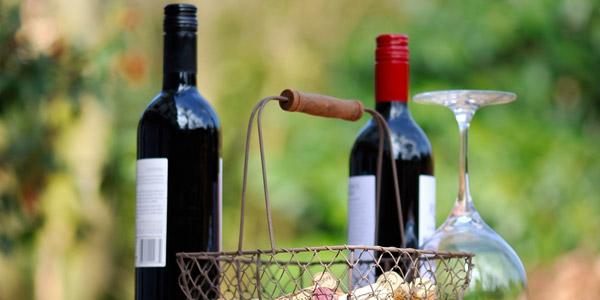 The Wine Fair in Polpenazze del Garda